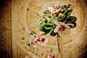 Flores, arte e fotografia reunidas no Espaço Agapanthus da próxima Feira Noivas Curitibanas